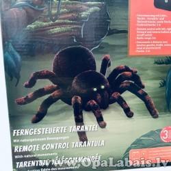 Zirneklis ar iespējamu tālvadību